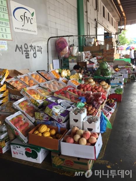 추석을 열흘 앞둔 지난 5일 가락시장 청과물코너에 각종 과일들이 진열되어 있다./사진=김도영 기자