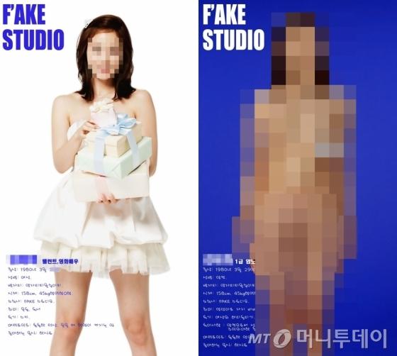 국내 최대 음란사이트 소라넷 등 온라인에 올라온 여성 연예인의 얼굴을 합성한 음란사진/사진제공=서울지방경찰청 사이버안전과