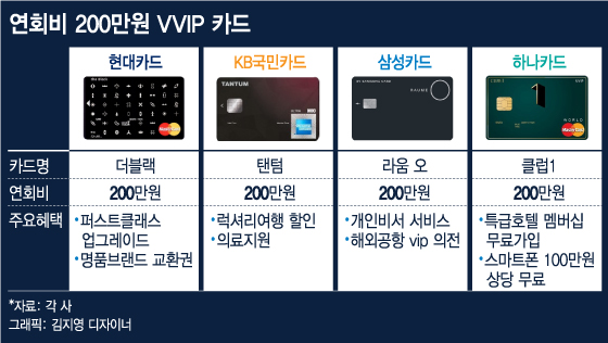 [단독]현대카드 연회비 250만원 VVIP카드 이달초 승인