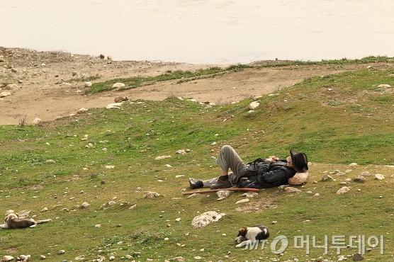 노인이 개들에게 먹이를 나눠주고 풀밭에 누워있다./사진=이호준 시인·여행작가