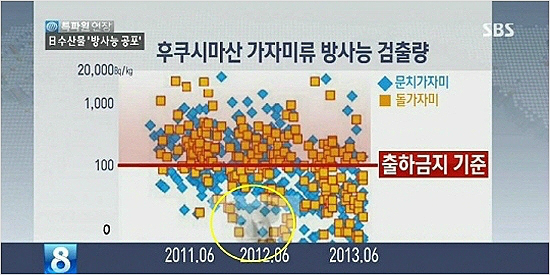 노무현 전 대통령과 코알라를 합성한 이미지가 도표에 합성된 모습. /사진=SBS
