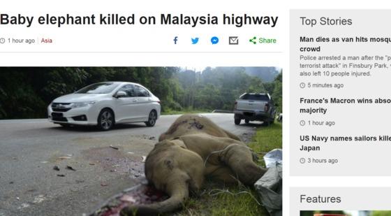 /사진=영국 BBC