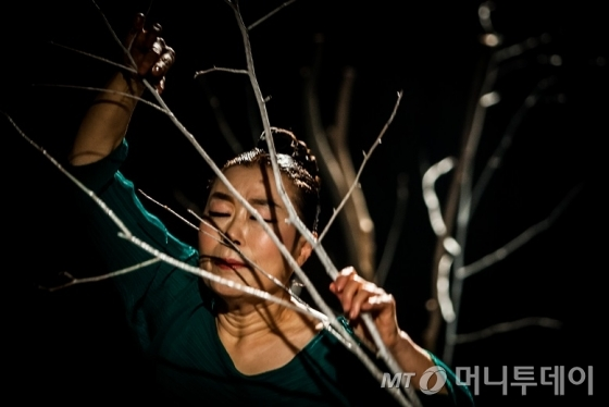 작품 '율곡'에서 배정혜 전 감독은 겨울의 쓸쓸함을 자작나무를 통해 표현한다. /사진제공=공연기획MCT