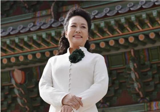 중국 국가주석 영부인 펑리위안 여사/사진=머니투데이DB