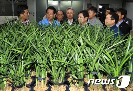 [사진]화훼농가 찾은 김영록 농림축산식품부 장관