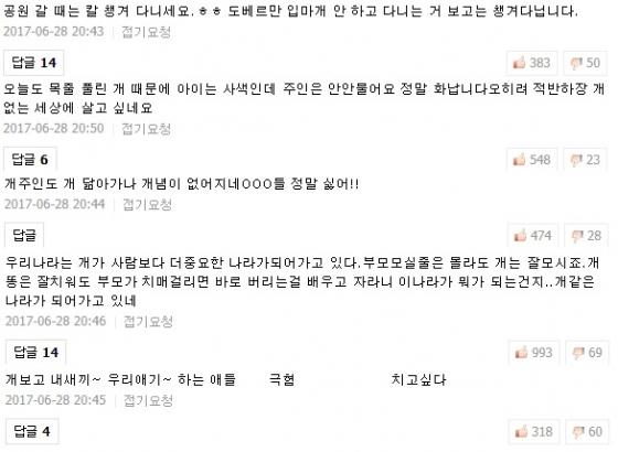 지난달 전북 군산에서 대형견 말라뮤트에 10살 아이가 물린 사건이 발생하자 해당 기사 아래 누리꾼들이 의견을 남겼다./사진=포털사이트