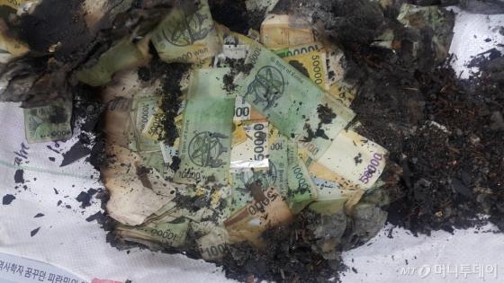 대구 서문시장 화재현장 복구 작업 중 발견된 금고내에 있던 훼손 은행권/사진=한국은행