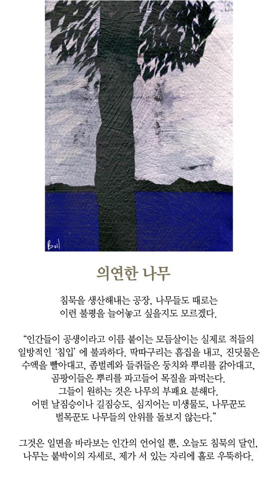 [보일샘의 포스트카드] 의연한 나무