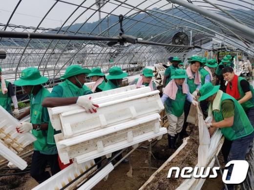[사진]새마을운동중앙회, 수해지역 복구활동