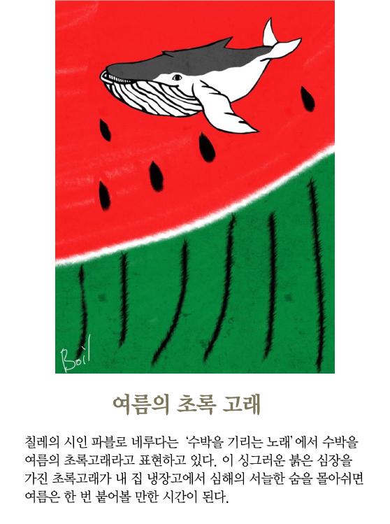 [보일샘의 포스트카드] 여름의 초록 고래