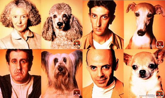 2000년 칸 국제광고제에서 수상한 동물사료업체 시저(Cesar)의 광고.