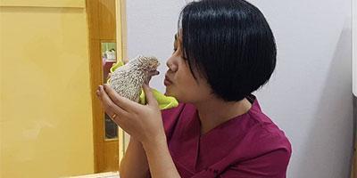 김미혜 수의사(송파에코동물병원장)