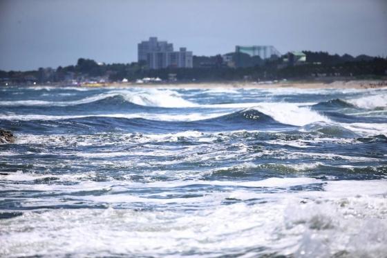 12일 오후 강원 양양군 남애1리 앞바다의 물결이 높게 일고 있다./ 사진=뉴시스
