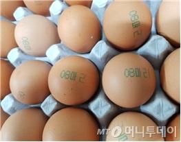 피프로닐이 검출된 마리농장의 계란.  계란껍질에 '08마리'가 표시돼 있다./사진제공=식품의약품안전처