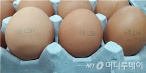 비펜트린이 검출된 우리농장 계란. '08 LSH'가 표시됐다./사진제공=식품의약품안전처