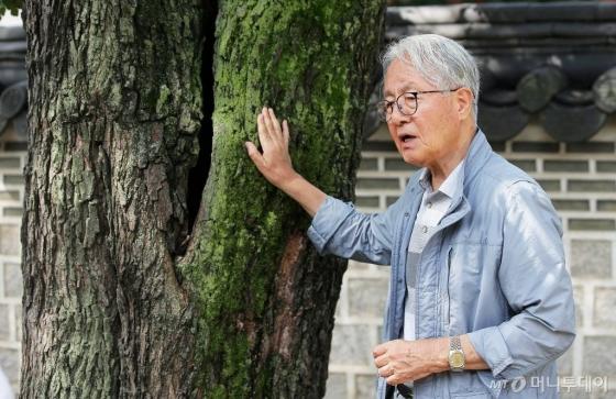 """박상진 교수는 창덕궁에 천 년 고목 느티나무 한 그루쯤은 있길 바란다. 처음 시작한 그곳이 어디든 거게 맡게 뿌리 내리는 성실한 삶. 박 교수는 """"나무는 있어야할 곳이 따로 없는 그런 존재""""라고 말했다.  /사진=김창현 기자"""