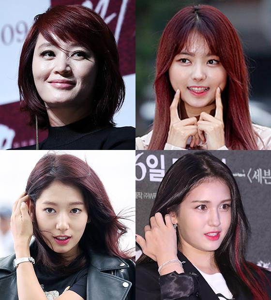 김혜수, 나영, 소미, 박신혜/사진=머니투데이DB, 뉴스1