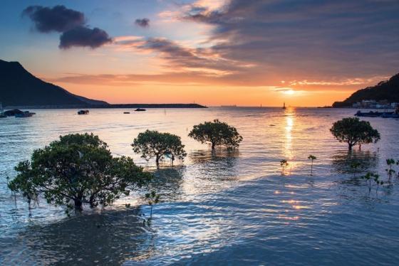 홍콩 타이오 마을의 일몰 풍경. /사진=제시카 리<br />