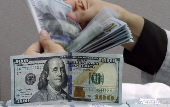 서울 중구 KEB하나은행 위변조대응센터에서 직원이 달러를 정리하는 모습./사진=뉴시스