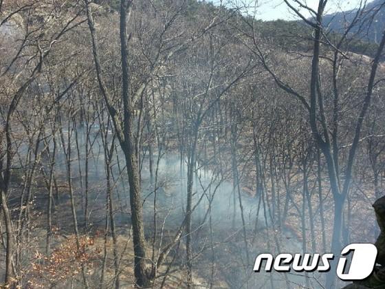 공주시 갑하산 굿당 주변에서 3일 산불이 발생했다. /사진제공=공주소방서, 뉴스1