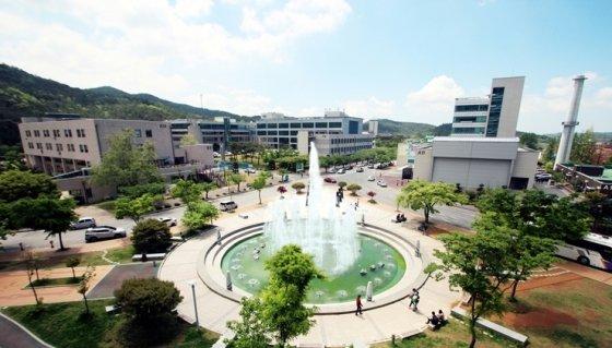 목포대, 취업률 61.4% 일반 국립대학 최상위권