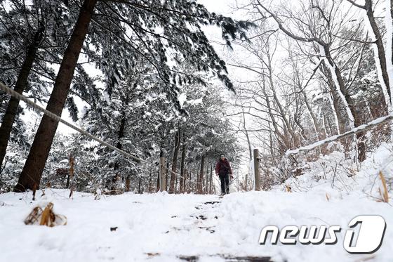 (자료사진)./뉴스1 © News1 서근영 기자