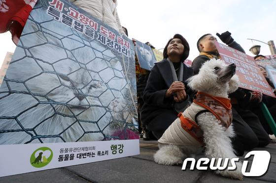 [사진]'개·고양이 식용 문화 없어지길'