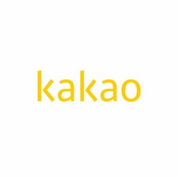 '카카오코인' 나오나…카카오 블록체인 전문 자회사 설립