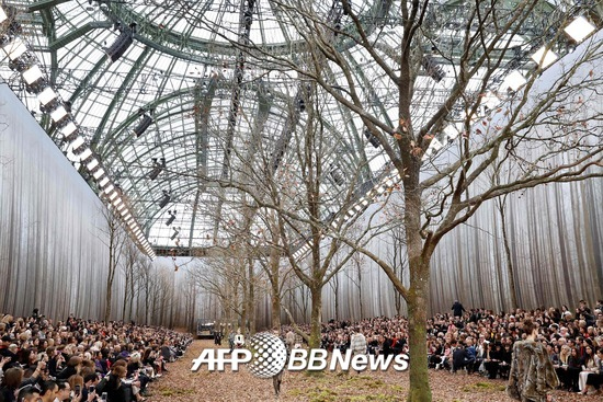 /AFPBBNews=뉴스1