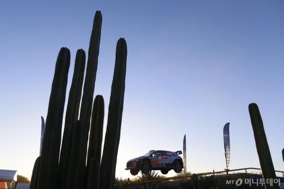 2018 WRC 3차 대회인 멕시코 랠리에 참가해 경기를 펼치고 있는 현대자동차의 신형 i20 랠리카/사진제공=현대차