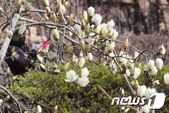 (자료사진)./뉴스1 © News1 이석형 기자