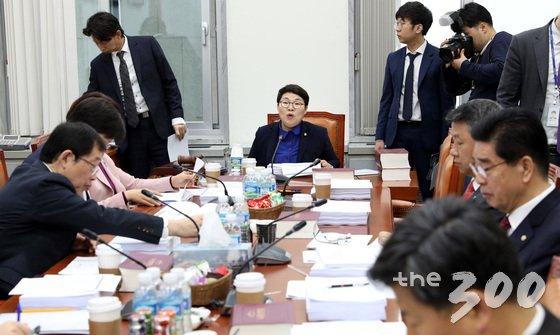 임이자 소위원장이 15일 오전 서울 여의도 국회 환경노동위원회 고용노동소위원회의에서 심사할 법안에 대해 설명하고 있다.  /사진=뉴스1