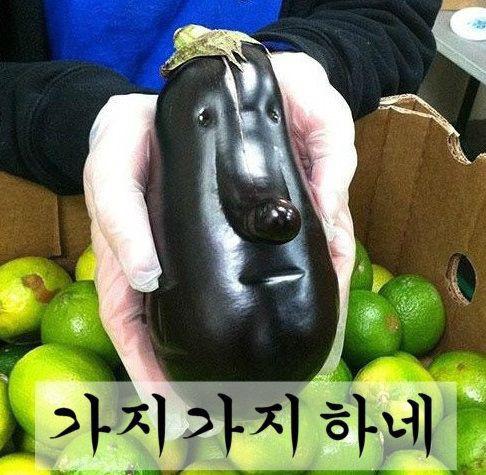 재판부 지못미. /사진=인터넷 커뮤니티