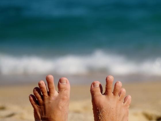 그나마 젤 예쁜 발가락 사진을 들고 옴. /사진=Pixabay
