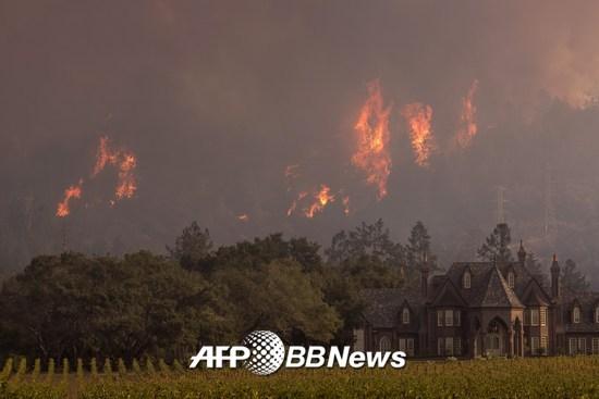 지난해 10월 미국 캘리포니아 켄우드 지역에 산불이 발생, 40여명이 사망하고, 5700여채의 건축물이 파손됐다. 렛슨 와이너리 뒤편으로 산불이 번지는 모습. /AFPBBNews=뉴스1