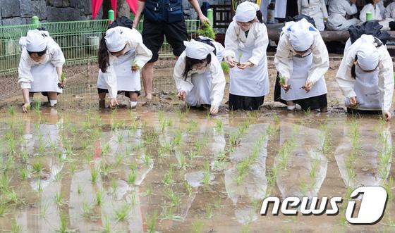 [사진]도심 속 꼬마농부들의 모내기 체험