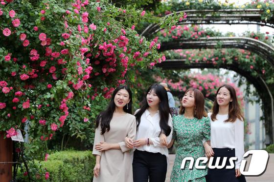 [사진]'장미꽃 보러 중랑천 가자'
