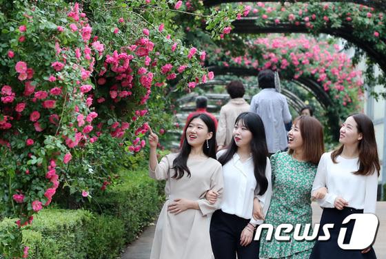 [사진]'장미꽃 정말 예쁘다'
