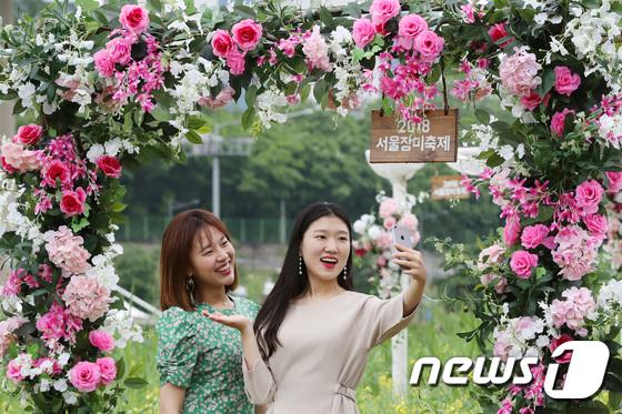 [사진]장미꽃 사이에서 '찰칵'