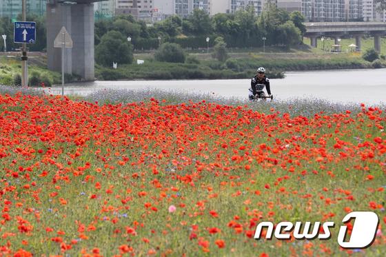 [사진]'빨간 물결따라 자전거 즐겨요'