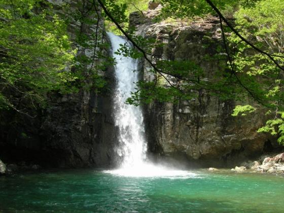 국립신불산폭포자연휴양림 파래소 폭포 /사진=국립자연휴양림관리소