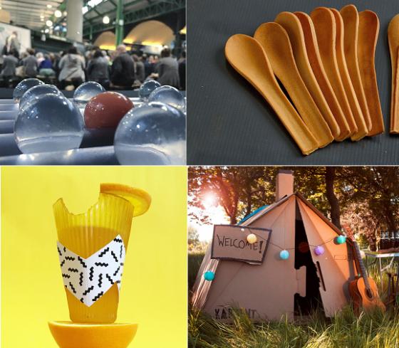 스타트업들이 개발한 친환경 제품들의 모습. 먹는 물병 우호(왼쪽 상단), 베이키스 식용 식기(오른쪽 상단), 롤리웨어 감귤맛 식용컵(왼쪽 하단), 카텐트의 젖지 않는 골판지 텐트./사진=각 스타트업 홈페이지