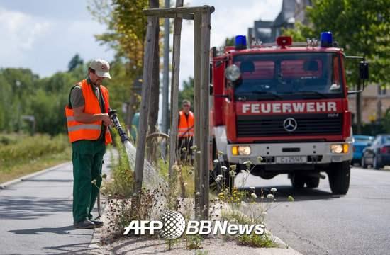 기록적인 폭염 속 독일 동부의 켐니츠 시 공원 관리인들이 소방차의 도움을 받아 공원 내 나무에 물을 주고 있다. /AFPBBNews=뉴스1