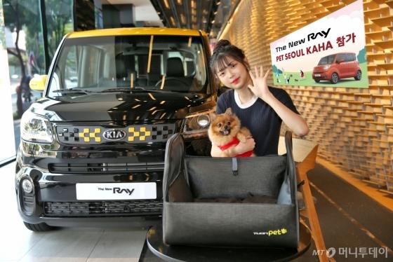 기아차 '더 뉴 레이' 차량(외관)과 '튜온펫' 카시트/사진제공=기아자동차
