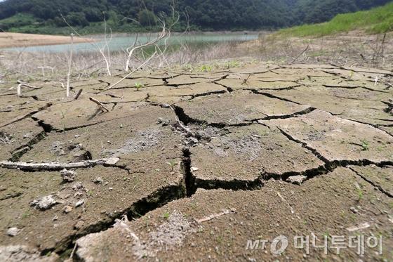 유례없는 폭염과 강우 없는 날이 계속되고 있는 9일 오후 전북 임실군 운암면 옥정호의 물이 말라가며 바닥이 쩍쩍 갈라졌다. 옥정호가 있는 섬진강댐의 저수율은 이날 13시 기준 36.3%로 한달 전인 지난 7월 9일 저수율 56.8%에 비해 20% 이상 낮아졌다.2018.8.9/뉴스1  <저작권자 © 뉴스1코리아, 무단전재 및 재배포 금지>