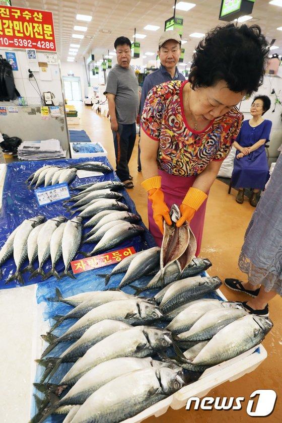 [사진]계속되는 폭염에 수산물 가격 폭등