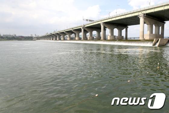 [사진]폭염에 나타난 한강 녹조