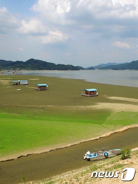 [사진]기록적인 폭염과 가뭄...바닥 드러난 예당호