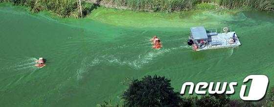 [사진]녹조방지 수차 설치되는 금강 백제보