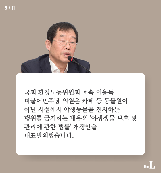 [카드뉴스] 빙글빙글 도는 동물들